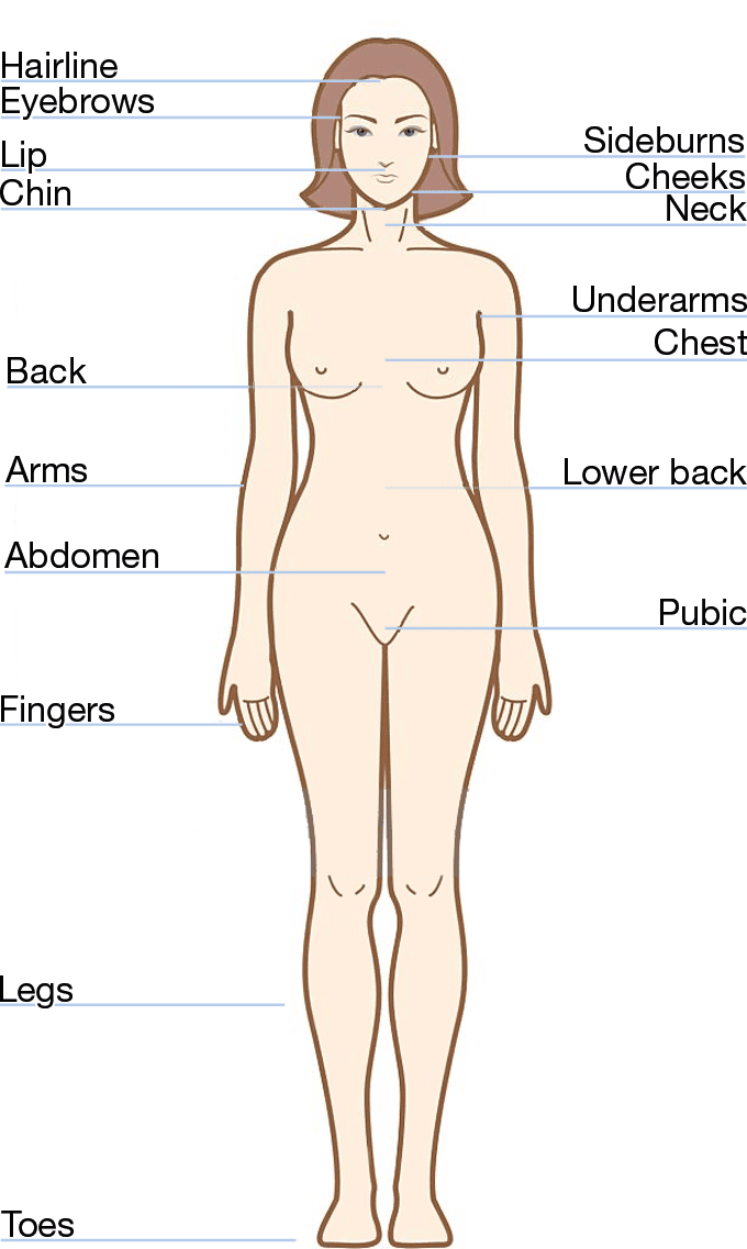 Transwomen hair removal timetable
